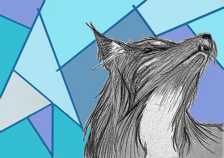 wolf-art